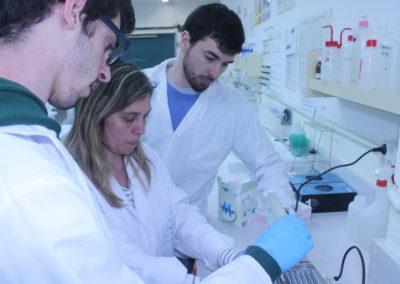 Pràctiques laboratori