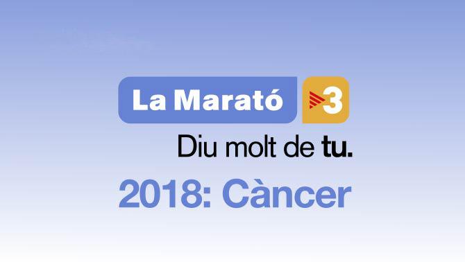 Arriben les xerrades de la Marató a l'Institut