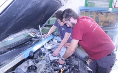 OFERTA DE FEINA: tècnic/a en família automoció