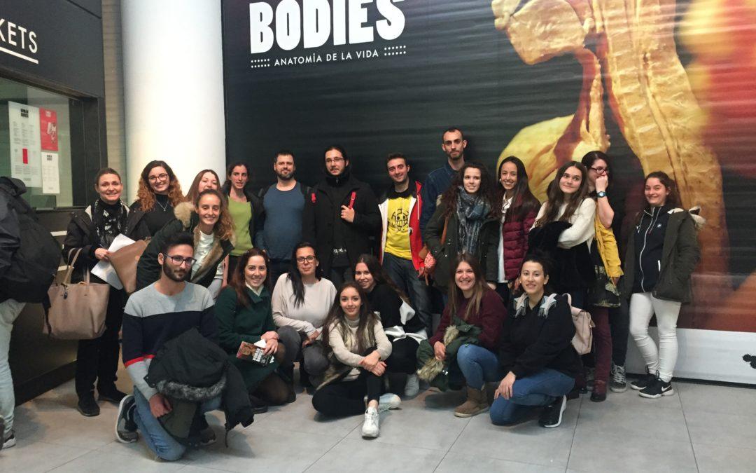 Visita a l'exposició Human bodies del cicle de laboratori